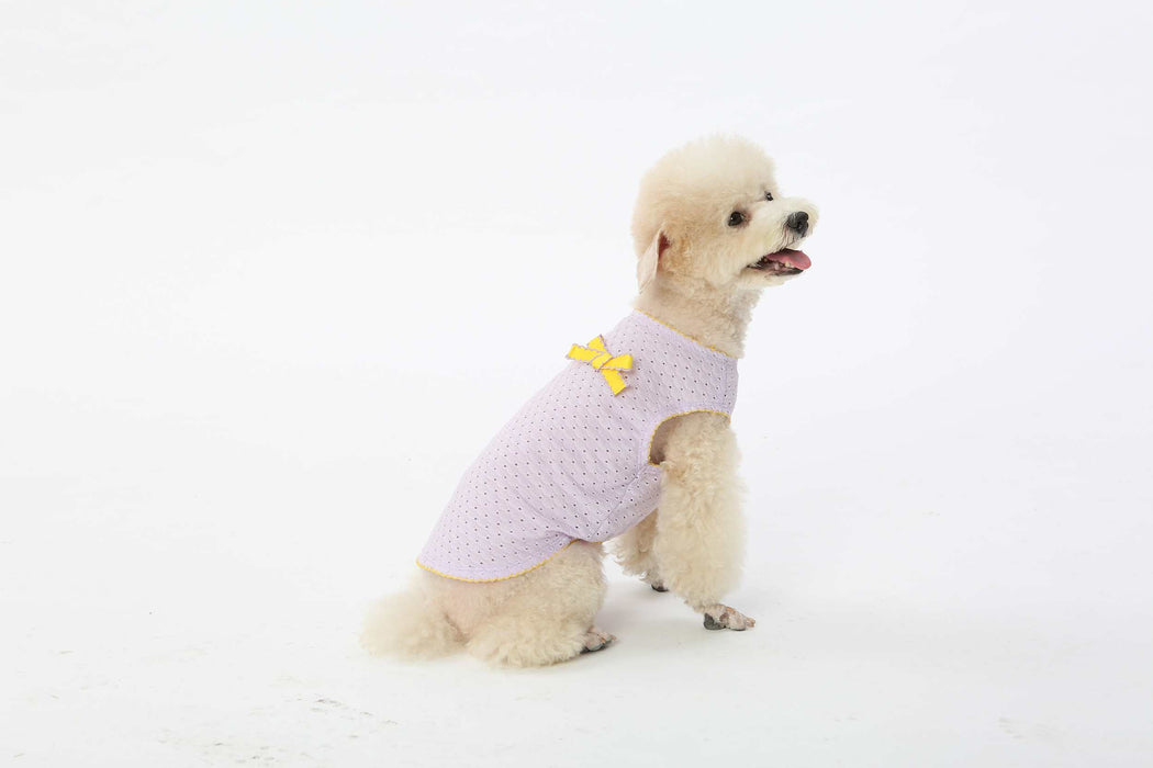 Purple dog clothes