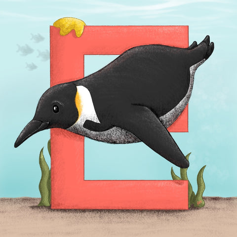 Emperor Penguin Square Unframed Art Print