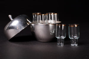 Shot Glasses in Silver Apple Case