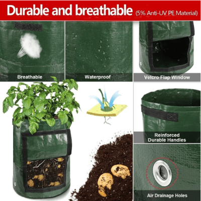 Plant growth bag—make your plants grow better