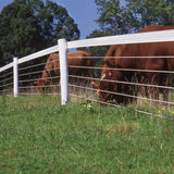 PolyPlus Coated Horse Fencing