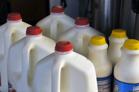 Milk, The 7 Main Types of Plastic and How to Recycle Them