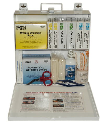 (6120) ANSI Plus #50 207 Piece Steel Case First Aid Kit w/ Wall Mount