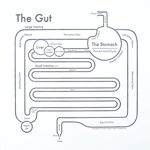 CLEARANCE - Archie's Press The Gut Print
