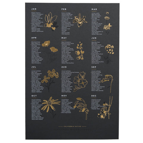 California Native Wildflower Poster