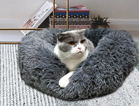 cat laying on marshmallow cat bed