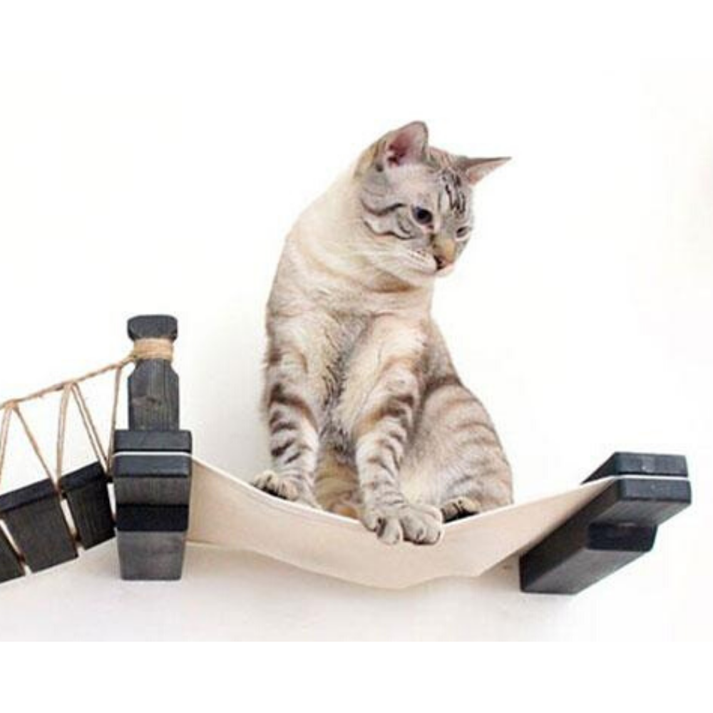 Bridge Cat Shelf