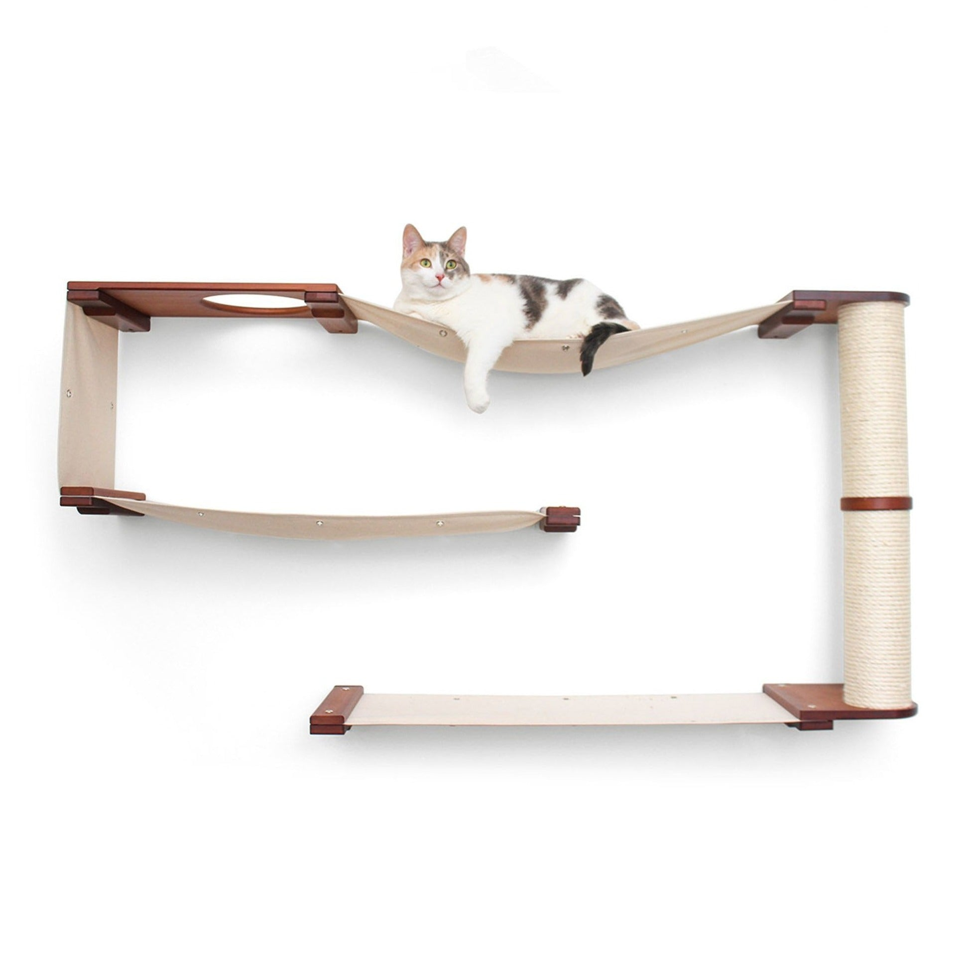 Cat Maze Catastrophic Creations