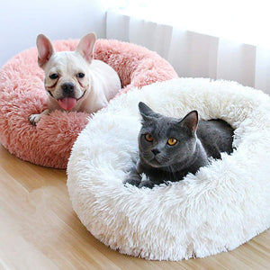 dog and cat in their calming pet beds