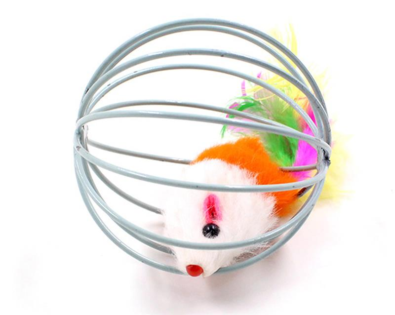 Mouse Cage Ball