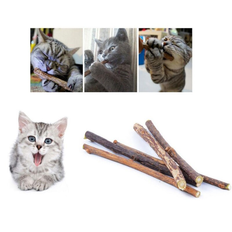 Catnip Sticks