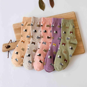 Kitty Pattern Socks  - Spring Colors