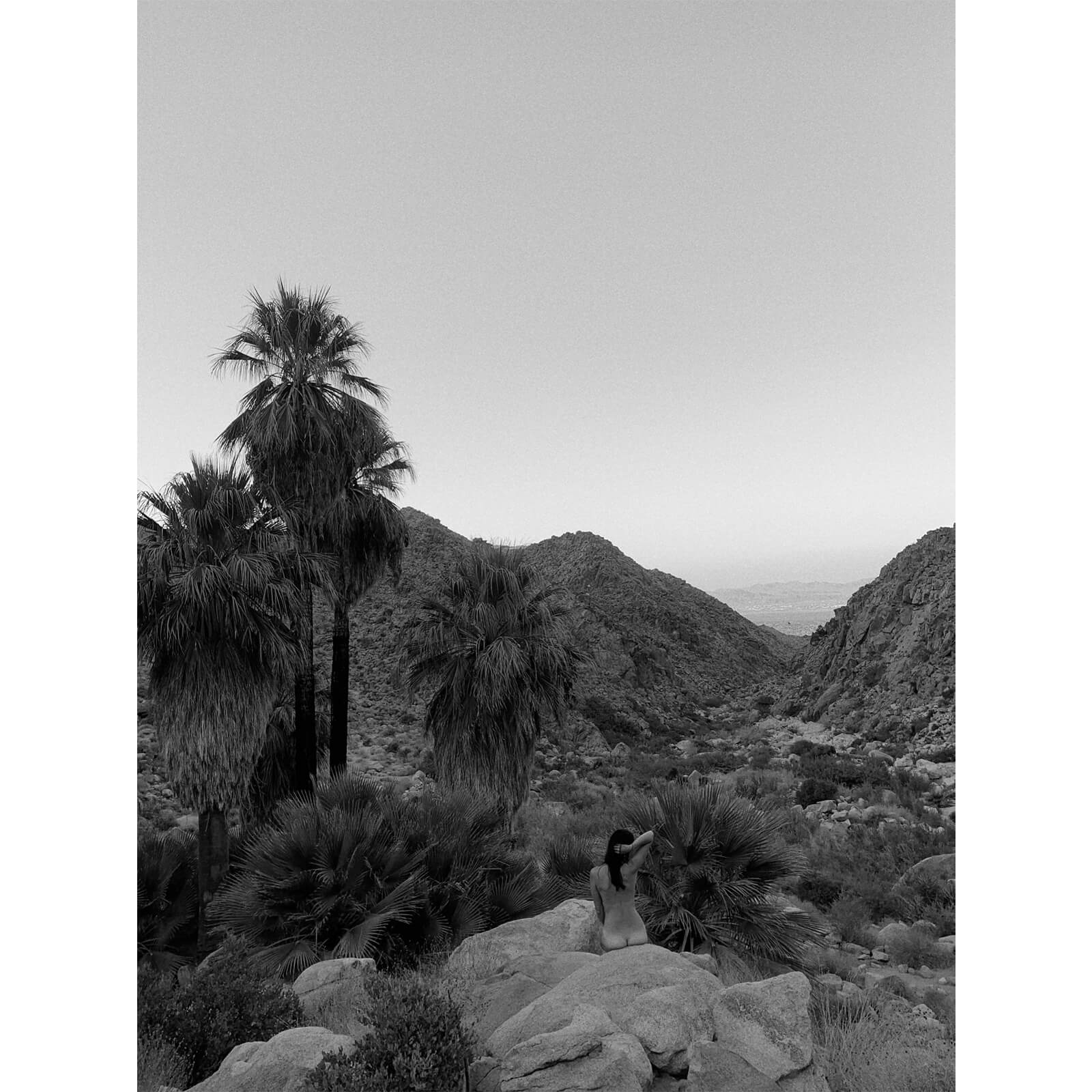 Michael Magers | Untitled, Joshua Tree, 2020 | MIRU Photo d'Art