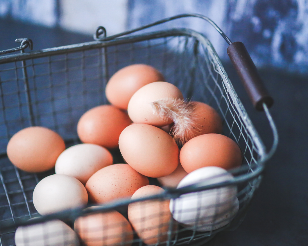Pasture-raised eggs- Weekly egg subscription