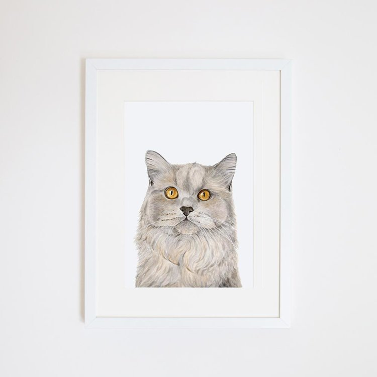 Otto the British Short Hair Cat Print