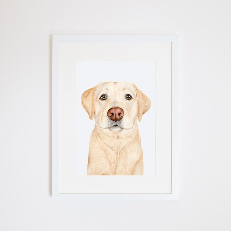 Ollie the Labrador Print
