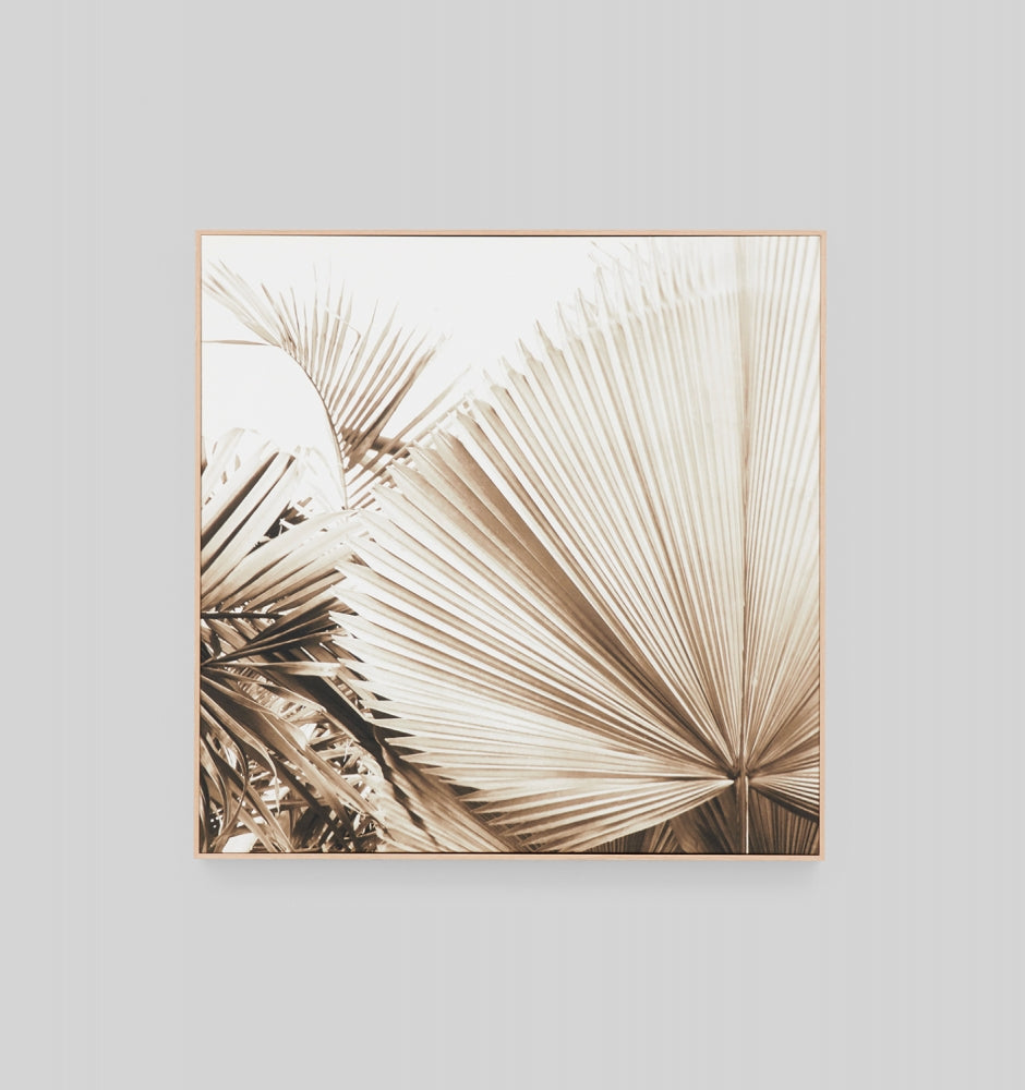 Desert Palm 1 Framed Canvas
