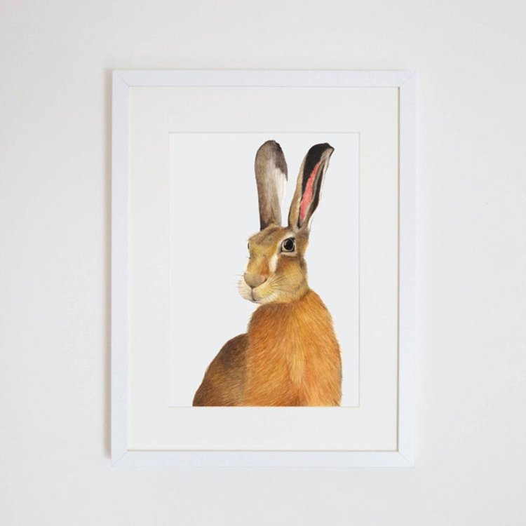 Harry The Hare Print