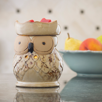 Candle Warmers Illumination - Owl