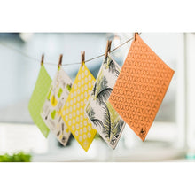 Load image into Gallery viewer, Kliin Bio Kitchen Towel Roll of 5