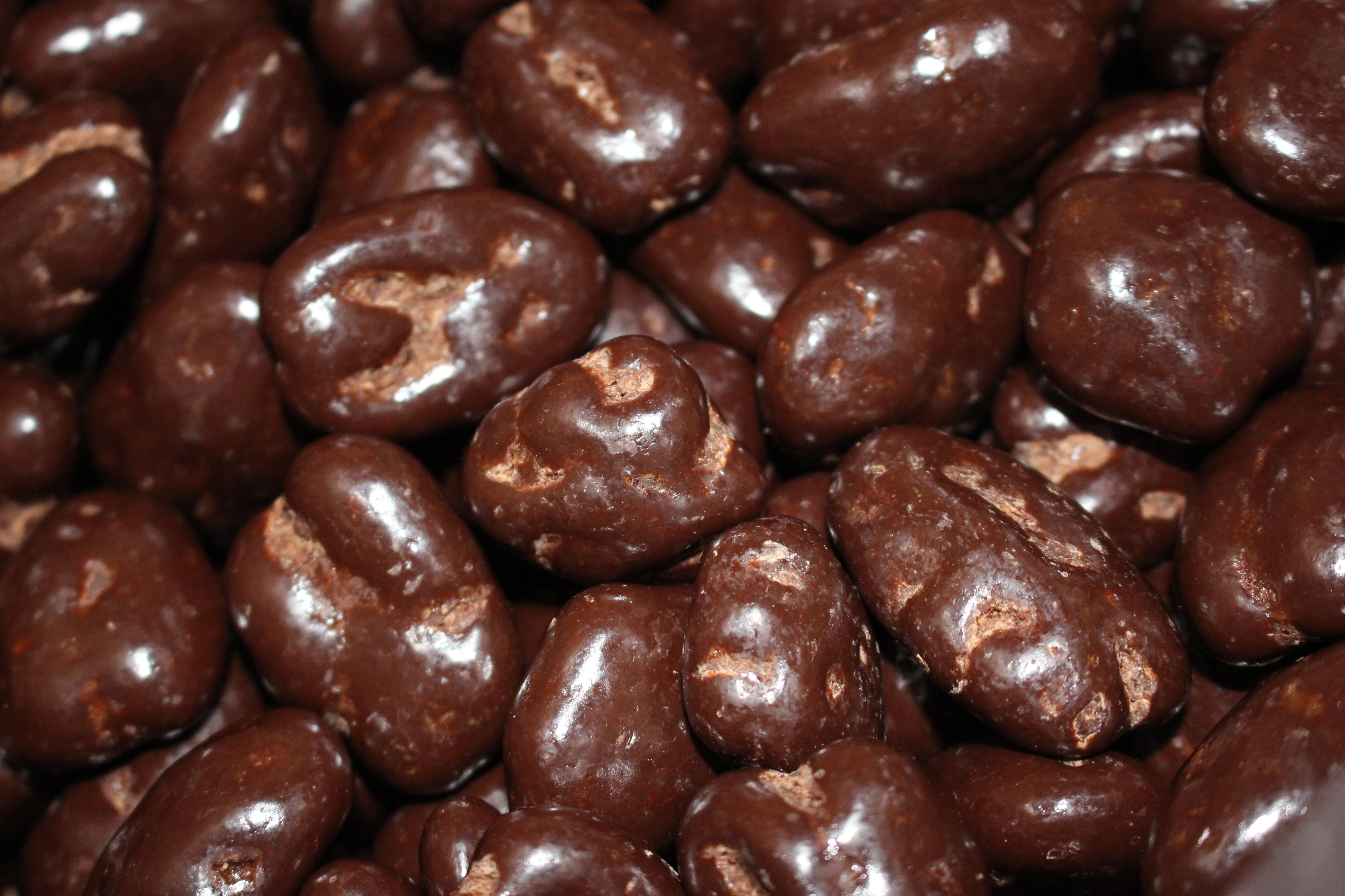 Dark Chocolate Pecans - 1 LB