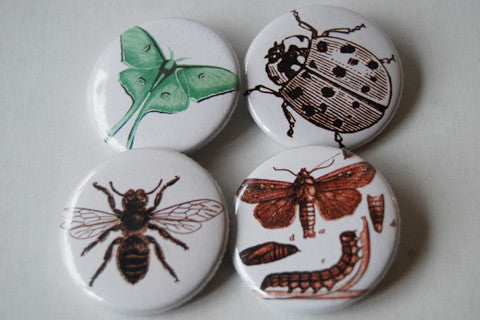 Set of 4 Buttons/Badges