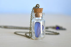 Butterfly Wing Bottle Terrarium | White & Purple Wing Necklace | Cute Butterfly Necklace