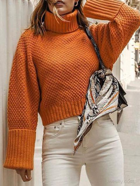 Turtleneck Pullover Long Sleeve Sweater