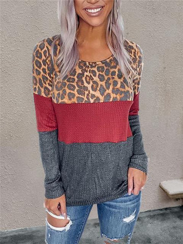 products/leopard-print-color-block-t-shirt_3.jpg