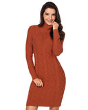 Twist Knitted High Neck Sweater Dress