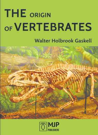 THE ORIGIN OF VERTEBRATES