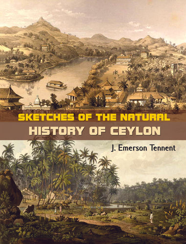 SKETCHES OF THE NATURAL HISTORY OF CEYLON