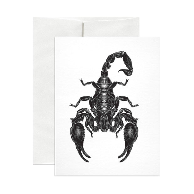 Emperor Scorpion Greeting Card