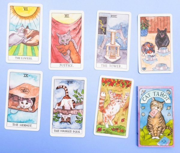 Cat Tarot by Megan Lynn Kott