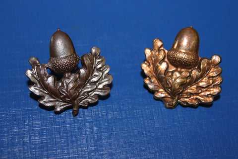 South Notts Hussars Collar Badge Pair