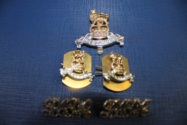 Royal Army Pay Corps Anodised Badge Set