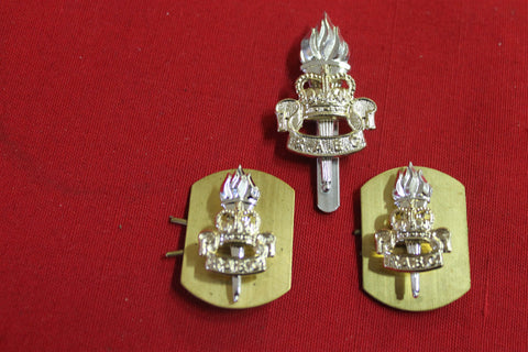 Royal Army Education Corps Badge Set