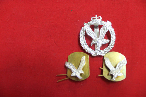 Army Air Corps Badge Set