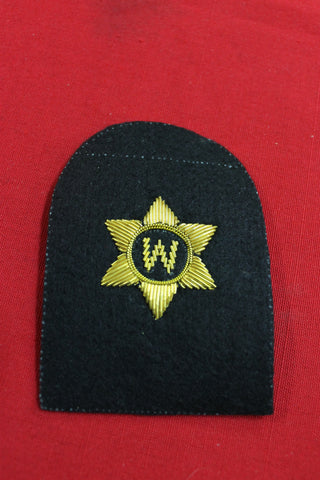 RAN Bullion Writer Right Arm Rate Patch