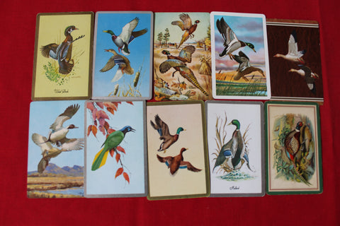 10 - Bird Swap Cards