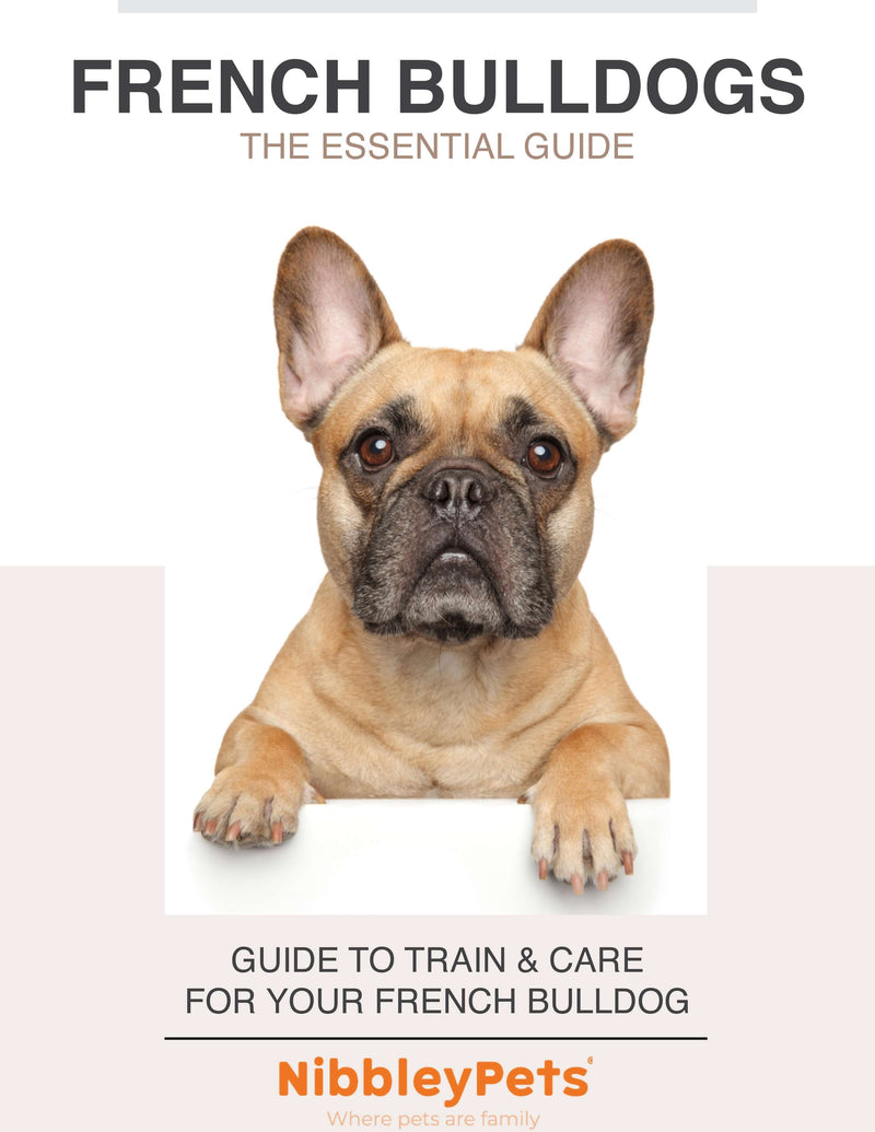 French Bulldogs: The Essential Guide (EBOOK)