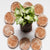 Coir Seedling Coins cocopeat disc, 50 mm Plant Starter Plugs100 pcs Bio_18x52C