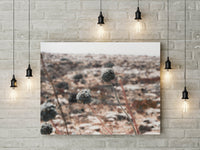 Wildflower Desert Print | Minimalist Digital Print | Printable Art - Vintage Radar