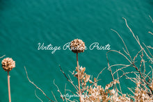 Load image into Gallery viewer, Wildflower Turquoise Print | Flower Digital Print | Printable Wall Art - Vintage Radar