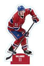 Load image into Gallery viewer, Stickers Minigols-Pix® Montreal Canadiens® Team Pack