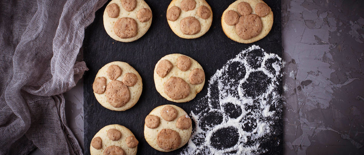 Homemade dog treats that your pup is going to LOVE.