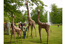 Load image into Gallery viewer, Animals - Safari - Giraffe Family
