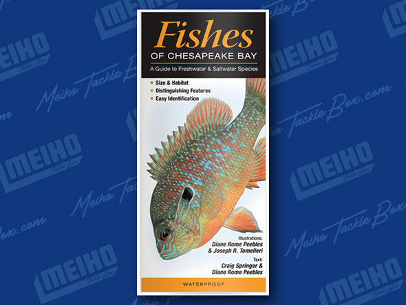 Informational Pamphlet Of All Fishes Caught In The Chesapeake Bay