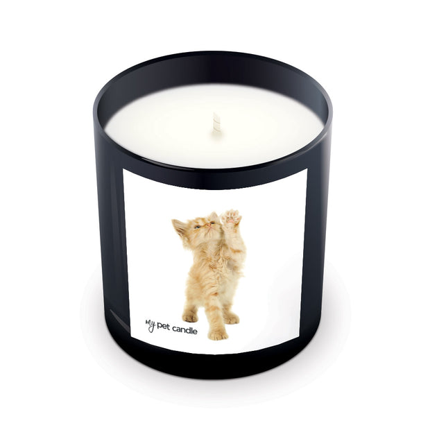 High Five Henry – 11oz Candle