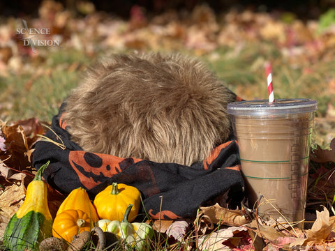 A Tribble dressed as me, Kayleigha, with a fall scarf, a pile of gourds, and a coffee